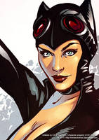 Catwoman detail by ChrisEvenhuis