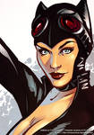 Catwoman detail