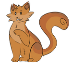 Squirrely boy