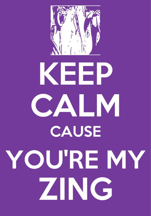 Cause you're my Zing by Bambrixbam