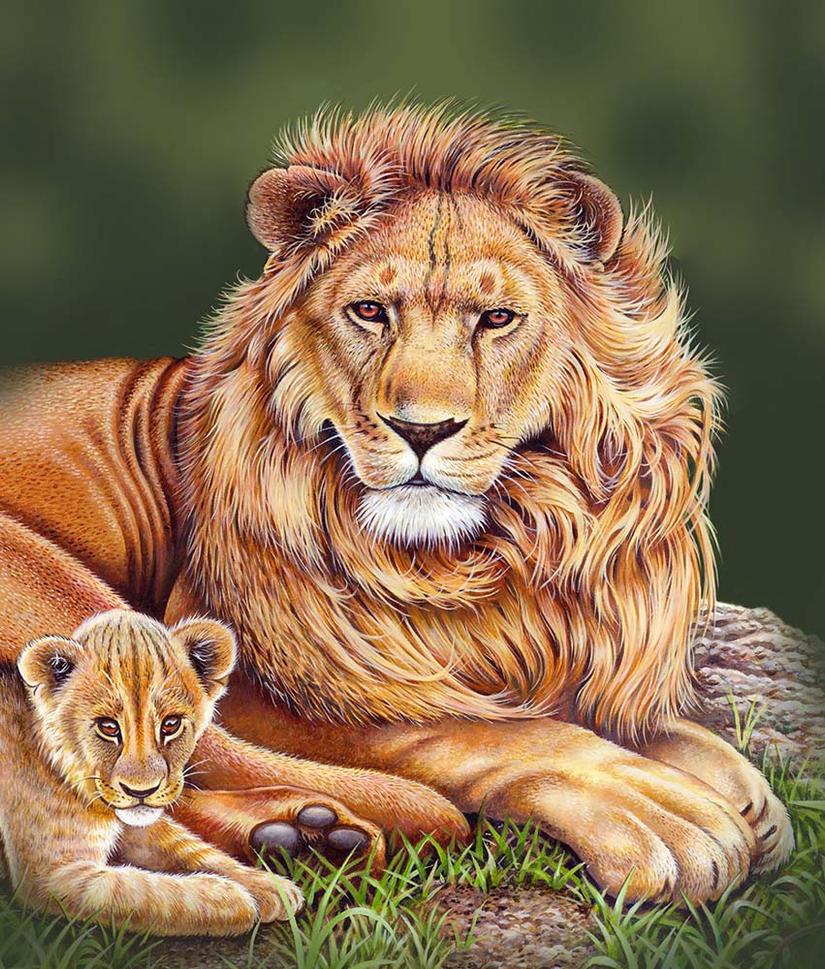 Lions by doodlebat72
