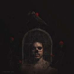 The Crow [1\3]