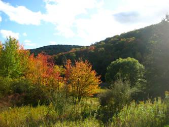 Autumn by firestar3590