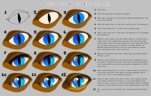 Quick Eye Tutorial by suzidragonlady