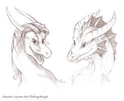 Larissa and Dragoth by suzidragonlady