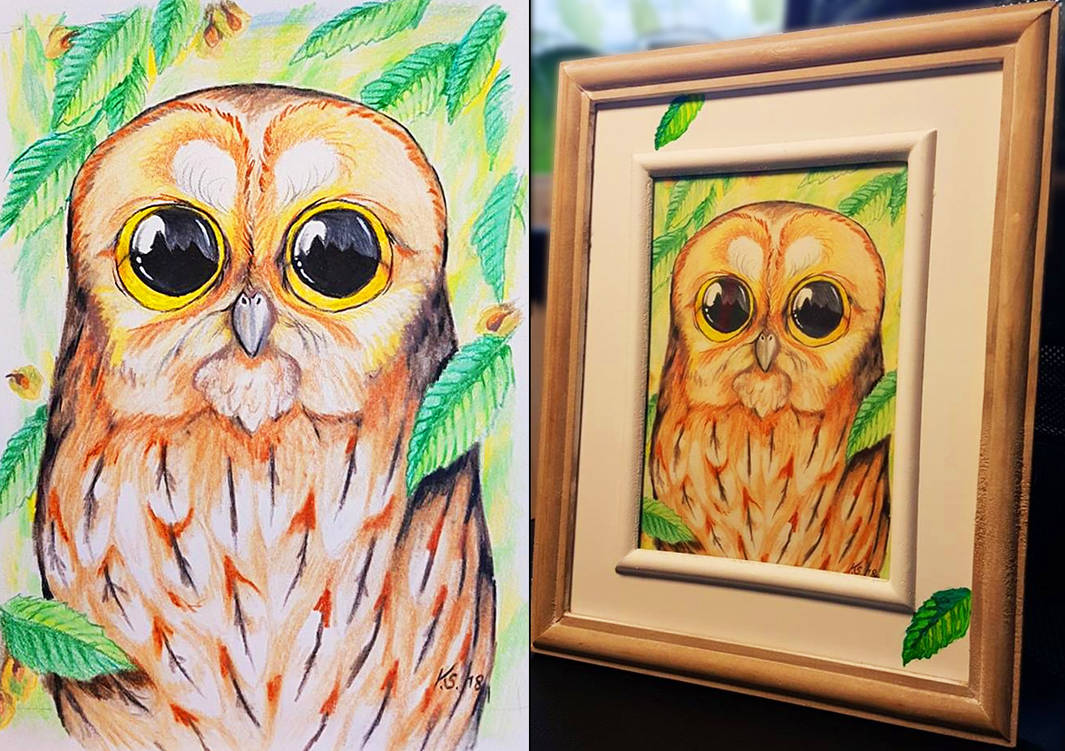 Tawny Owl in the elm tree by suzidragonlady
