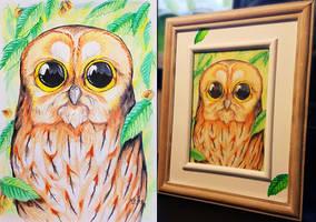 <b>Tawny Owl In The Elm Tree</b><br><i>suzidragonlady</i>