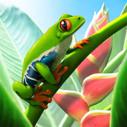 Red-eyed treefrog by suzidragonlady