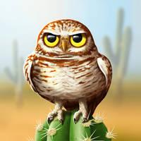 Burrowing Owly by suzidragonlady