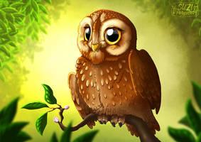 Sweet Little Owl
