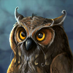 Owl Eldest