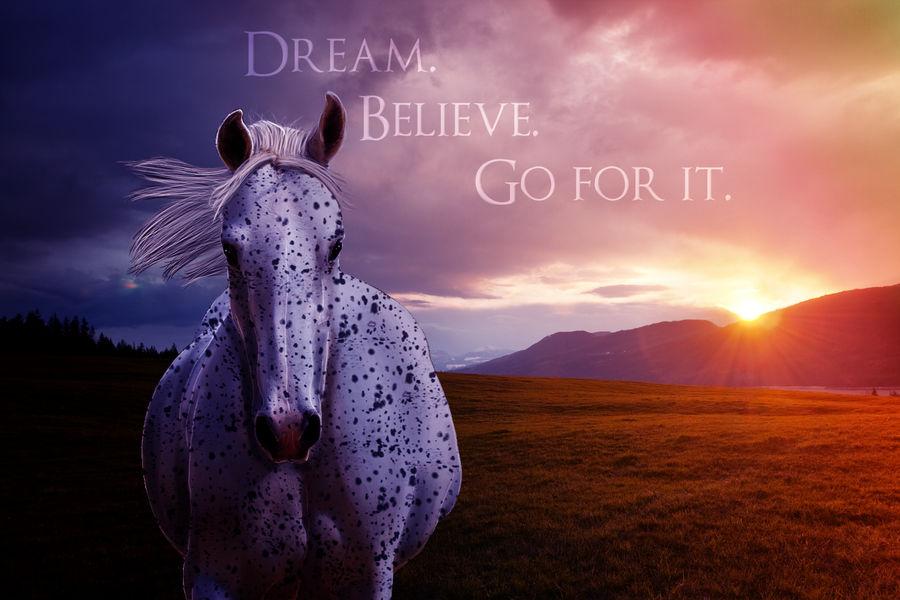 x.Dream.Believe.Go for it.x