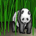 Panda Pixel 3