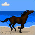 Gallop on the Beach Pixel