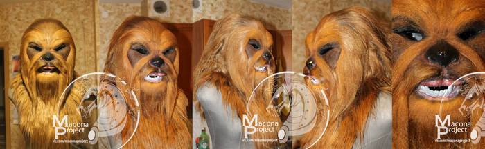 Chewbacca by vivean2005
