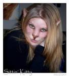 Sittin' Kitty