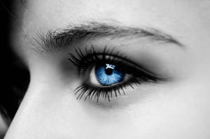 Blue Eye by inf23