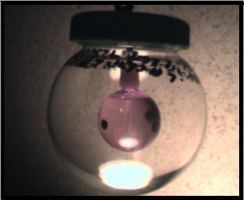 Fairy Ball by IV-studios