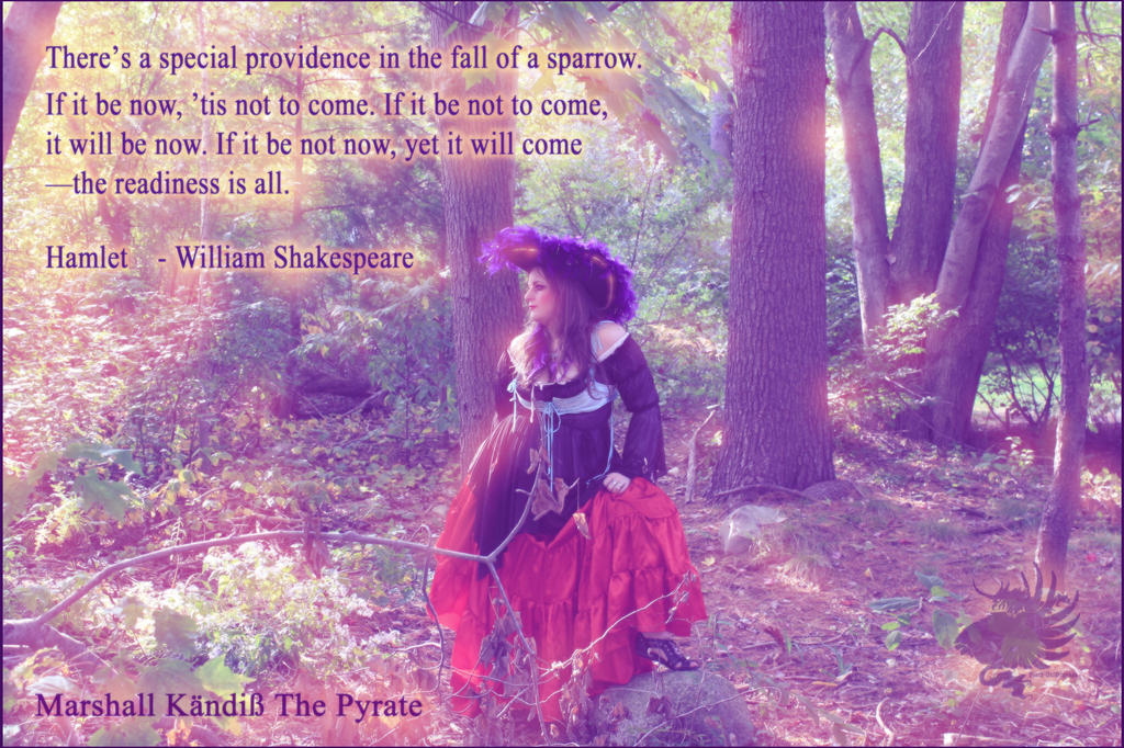 Hamlet The Readiness Is All Marshall Kandice Pyrat by BlackUniGryphon