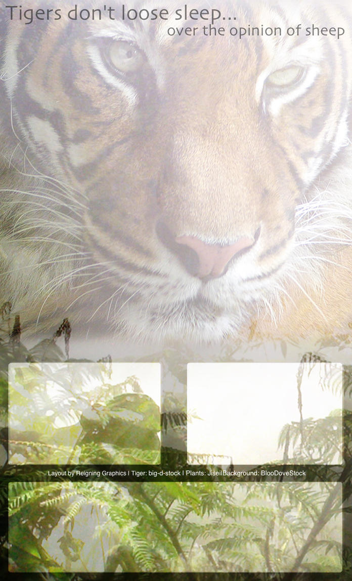 Tiger layout by Reigning-Graphics