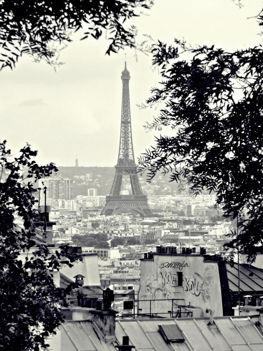 La tour Eiffel by DshaLie