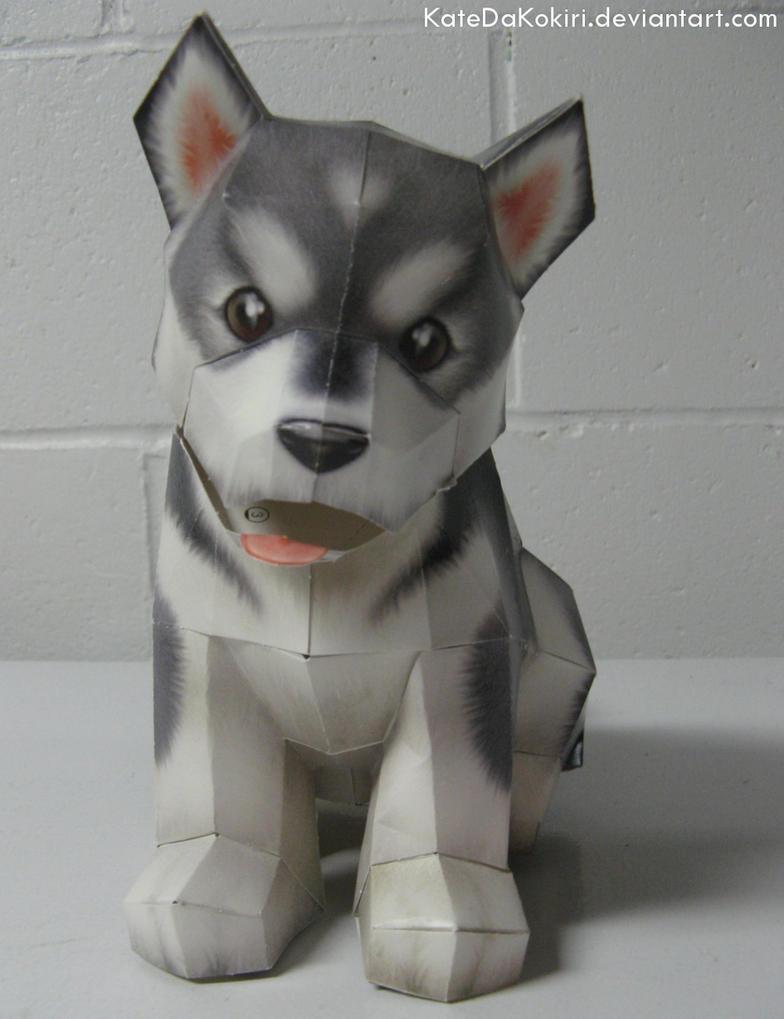 Puppy Papercraft by KatedaKokiri