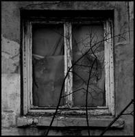 window's tales by therainb0w