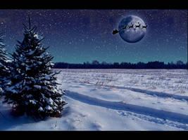 Christmas by liamw