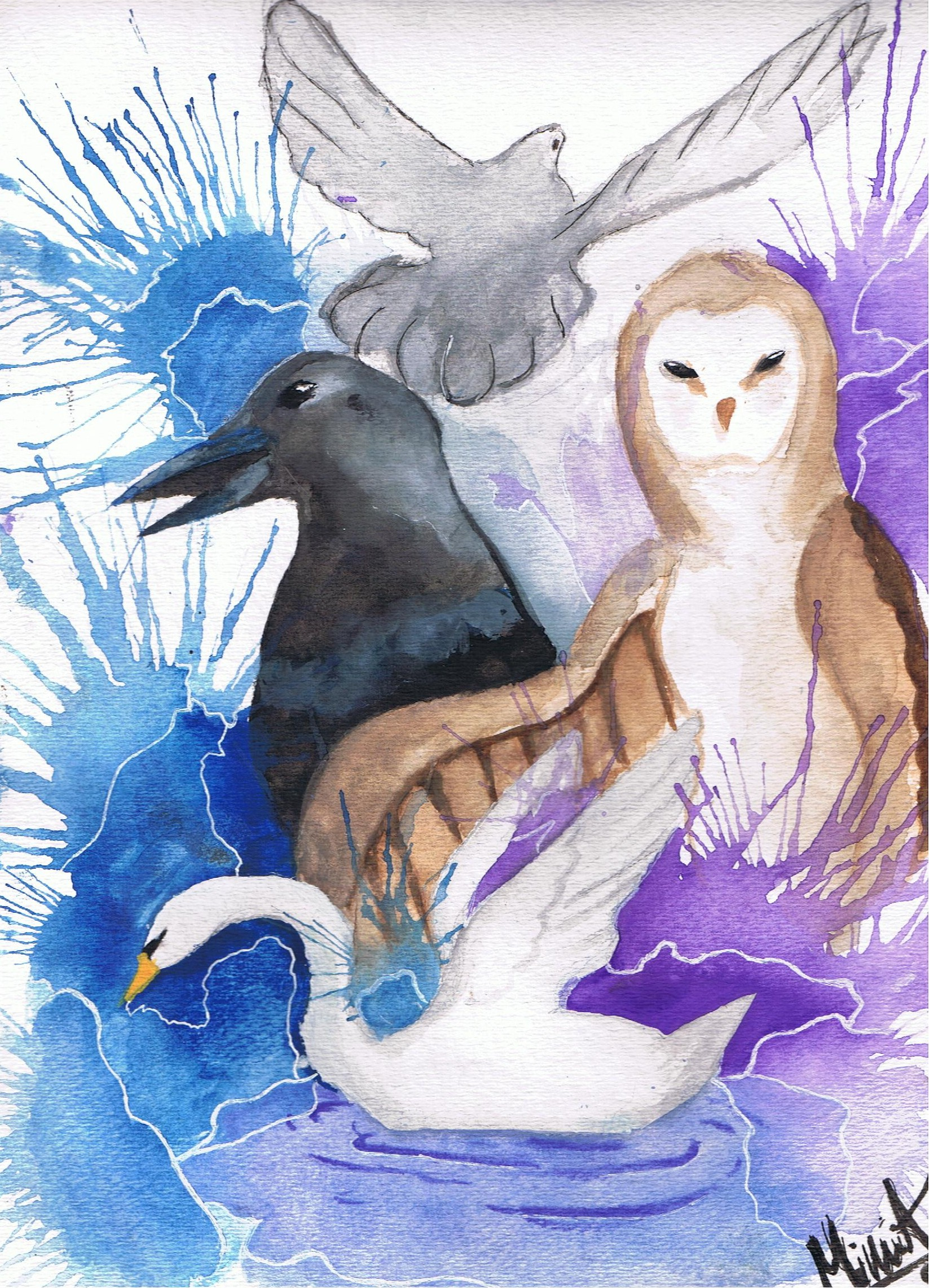 the dove and the crow The dove and the crow - kindle edition by joseph hirsch download it once and read it on your kindle device, pc, phones or tablets use features like bookmarks, note taking and highlighting while reading the dove and the crow.