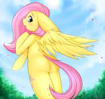 Fluttershy's Lovely Day