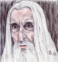 Saruman by LoonaLucy