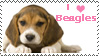 i love beagles-stamp by AriannaPeyton