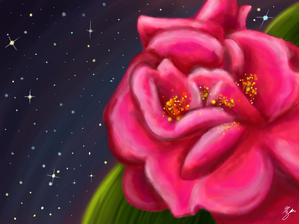 Rosa Colores by Migca
