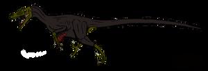 Utahraptor ostrommaysorum by BrooksLeibee