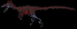 Velociraptor mongoliensis by BrooksLeibee