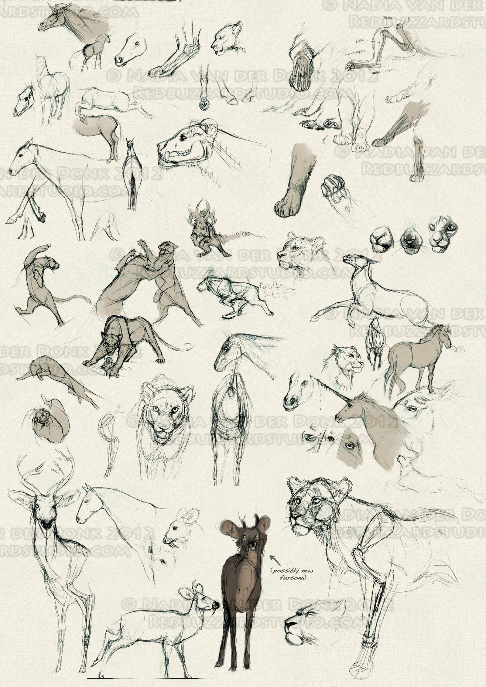 Sketchbook Dump 4 by NadiavanderDonk