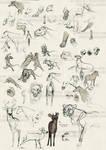 Sketchbook Dump 4