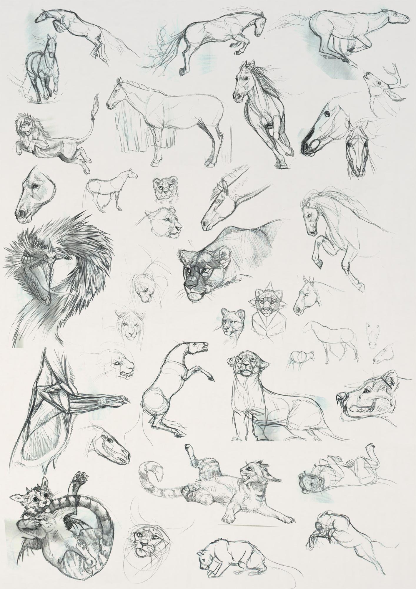 Sketchbook Dump 5 by NadiavanderDonk