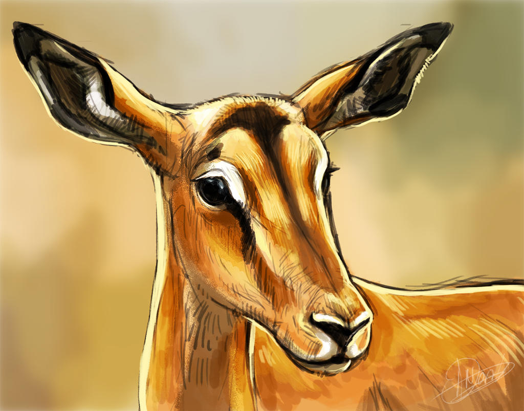 Impala Speedpaint by NadiavanderDonk