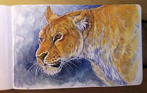 Watercolor painting - Lioness by NadiavanderDonk