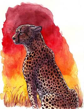 Watercolor - Sunset Cheetah (Patreon reward)