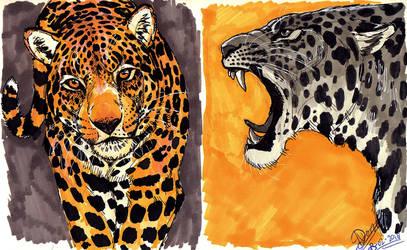 Jaguars by NadiavanderDonk