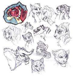 MORE CATS - Sketches by NadiavanderDonk