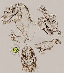 Ceratosaurus sketches by NadiavanderDonk