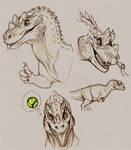 Ceratosaurus sketches