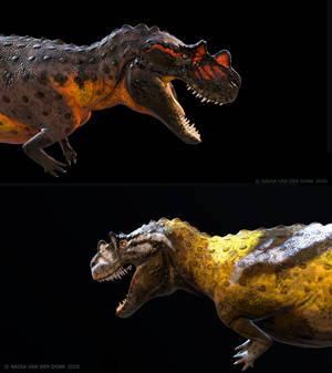 Ceratosaurus (3D)