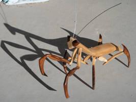 Mantis by rcdog