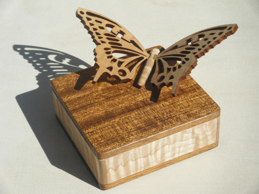 Butterfly box by rcdog