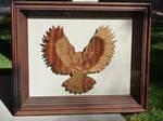 Owl by rcdog