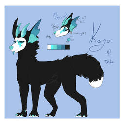 .:Kajo:. Reference sheet by sinnekin